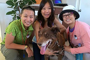 Keystone the dog with Jacq, Gennet, and Jaclyn, volunteers from Singapore