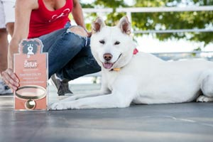 Renee Schlather of Treasured K9s with a white dog at Strut Your Mutt in NYC