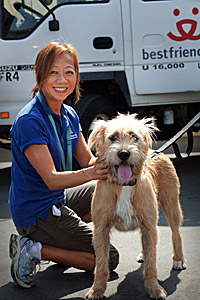 Volunteer with cute scruffy dog