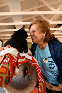Jane makes a new friend: a black cat