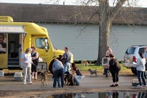 Spay-Neuter Assistance Program (SNAP) loading animals in Wharton County, Texas