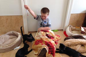 Six-year-old Ethan playing with the cats at Cat World at Best Friends Animal Sanctuary
