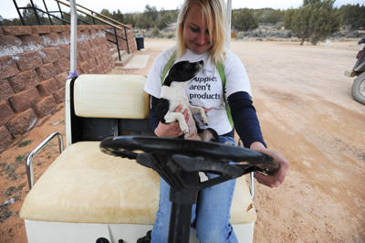 Best Friends Animal Society dog Katelyn going for a golf cart ride